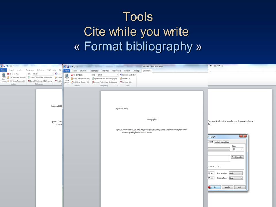 82 Tools Cite while you write « Format bibliography »