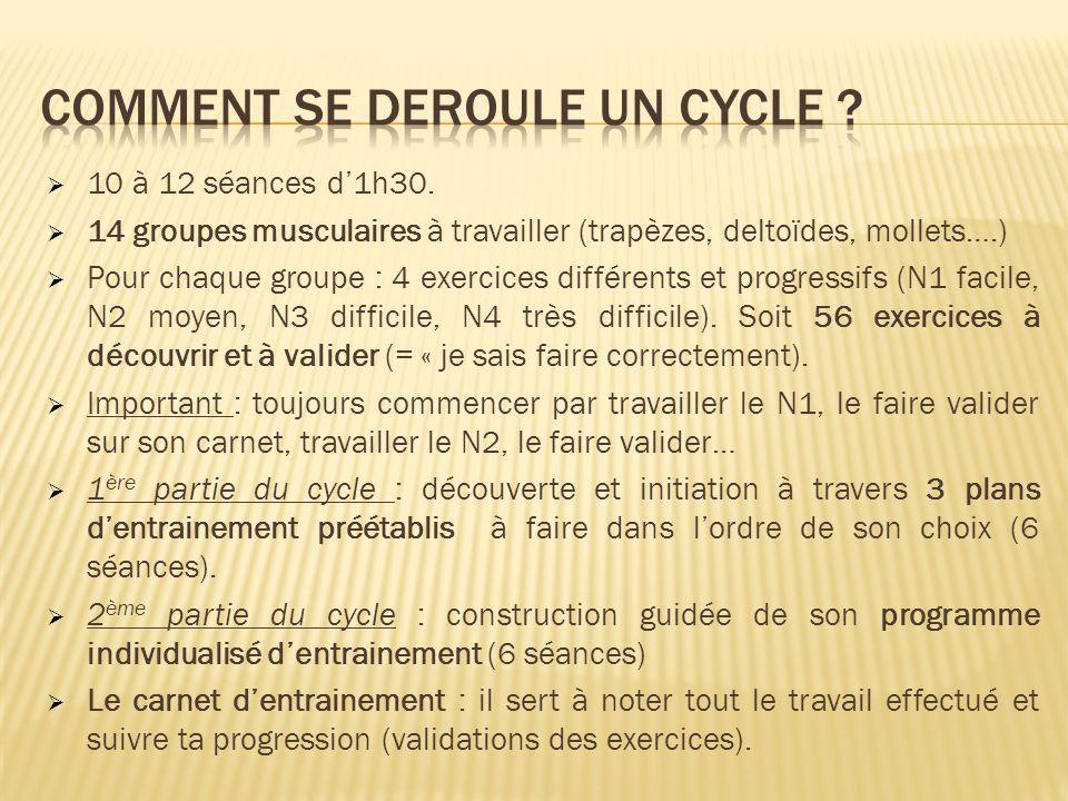 10 à 12 séances d1h30. 14 groupes musculaires à travailler (trapèzes, deltoïdes, mollets….) Pour chaque groupe : 4 exercices différents et progressifs