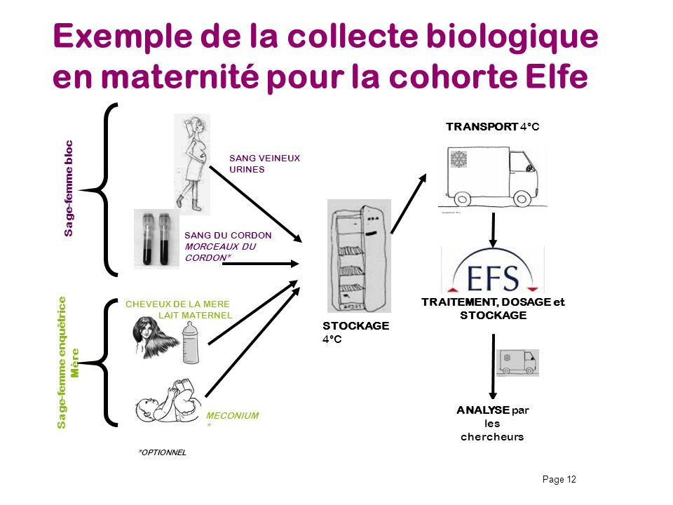 Exemple de la collecte biologique en maternité pour la cohorte Elfe Page 12 TRAITEMENT, DOSAGE et STOCKAGE *OPTIONNEL STOCKAGE 4°C MECONIUM * SANG VEI