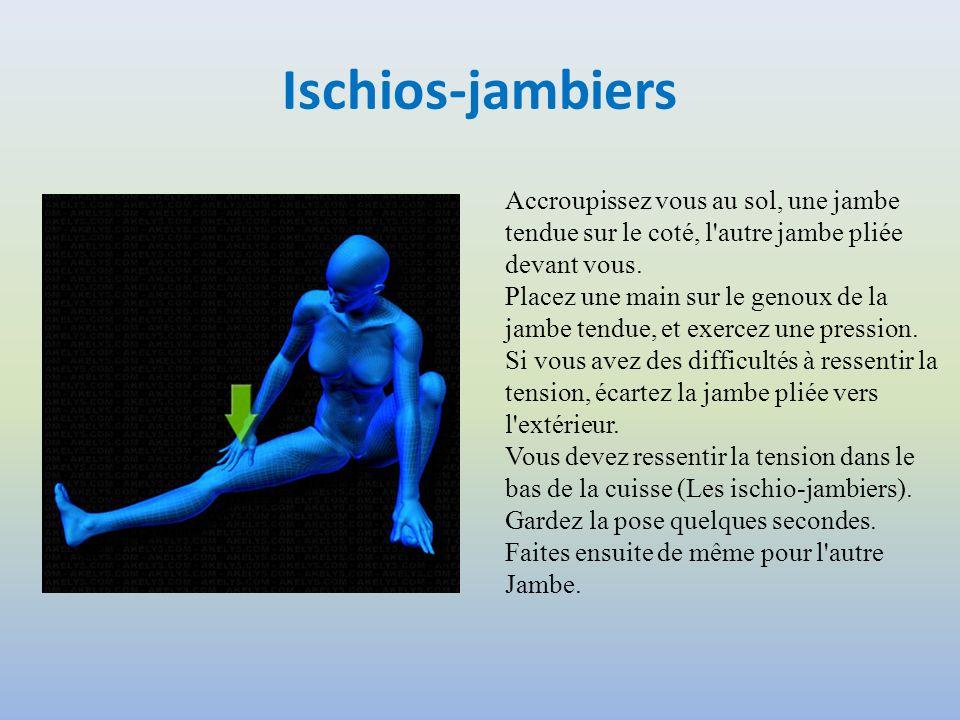 Ischios-jambiers Accroupissez vous au sol, une jambe tendue sur le coté, l'autre jambe pliée devant vous. Placez une main sur le genoux de la jambe te