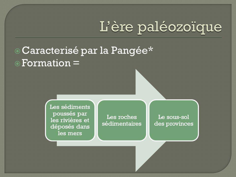 Caracterisé par la Pangée* Formation = Les sédiments poussés par les rivières et déposés dans les mers Les roches sédimentaires Le sous-sol des provin