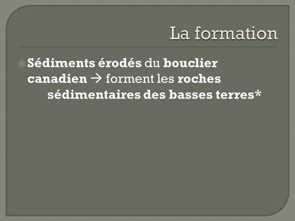 Sédiments érodés du bouclier canadien forment les roches sédimentaires des basses terres*