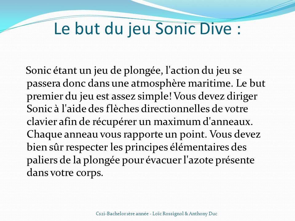 Le but du jeu Sonic Dive : Sonic étant un jeu de plongée, l'action du jeu se passera donc dans une atmosphère maritime. Le but premier du jeu est asse