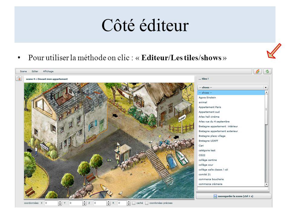 Côté éditeur Pour utiliser la méthode on clic : « Editeur/Les tiles/shows »