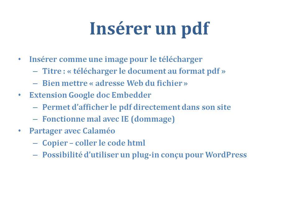 Insérer un pdf Insérer comme une image pour le télécharger – Titre : « télécharger le document au format pdf » – Bien mettre « adresse Web du fichier » Extension Google doc Embedder – Permet dafficher le pdf directement dans son site – Fonctionne mal avec IE (dommage) Partager avec Calaméo – Copier – coller le code html – Possibilité dutiliser un plug-in conçu pour WordPress
