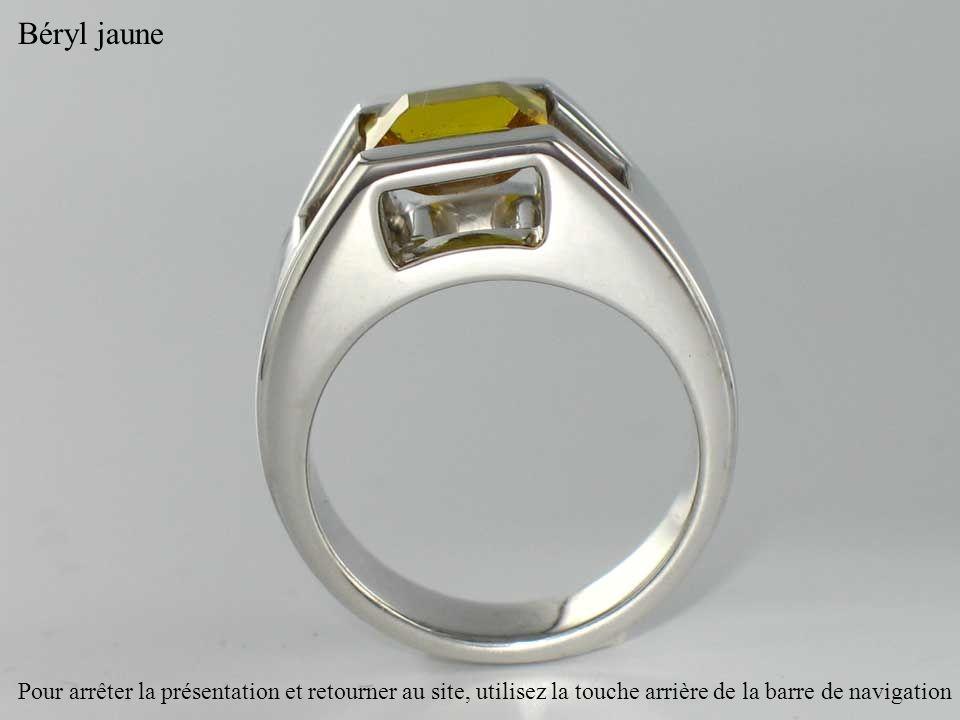 Béryl jaune Pour arrêter la présentation et retourner au site, utilisez la touche arrière de la barre de navigation