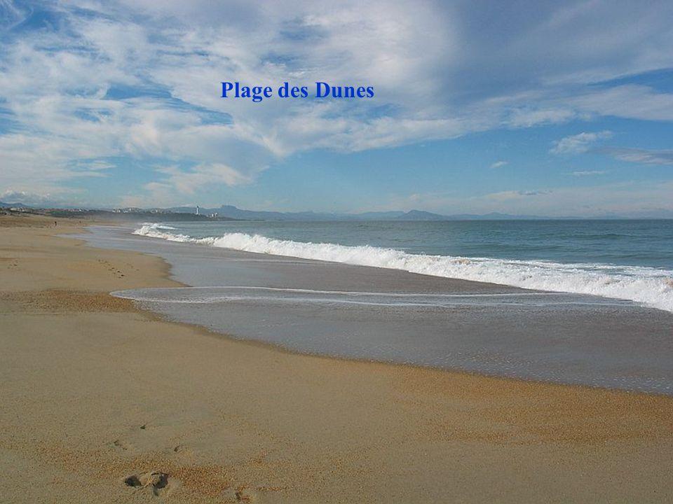 Pêcheur plage des Cavaliers vue sur Embouchure de lAdour