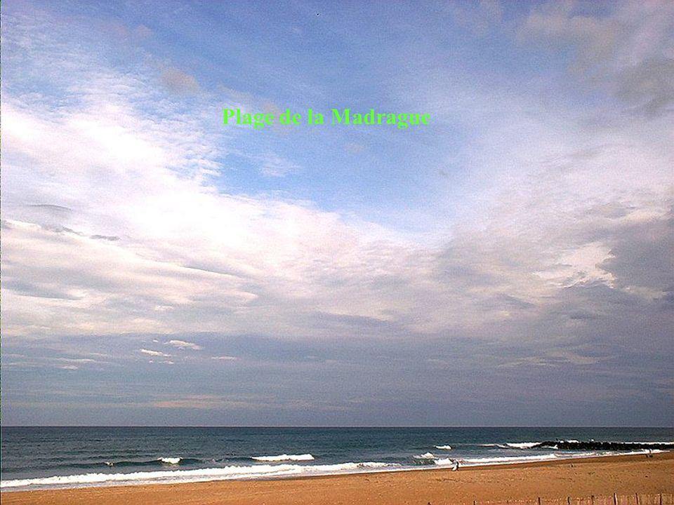 Promenade entre plages et golf de Chiberta Plage de la Madrague