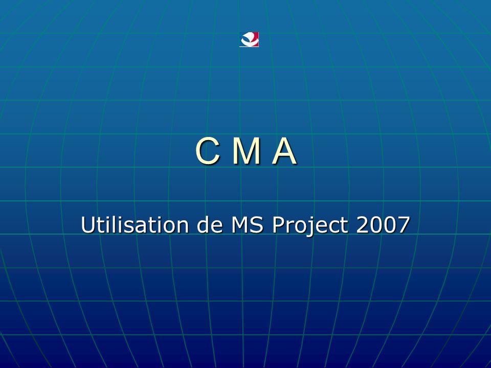 2011 - 2012 D. VALLETON - CMA 22 MS Project – Affichage - 2 Barre standard Les fonctions de base