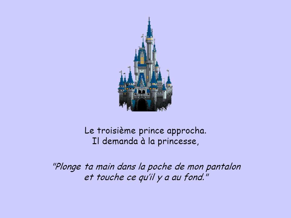 Le troisième prince approcha. Il demanda à la princesse,