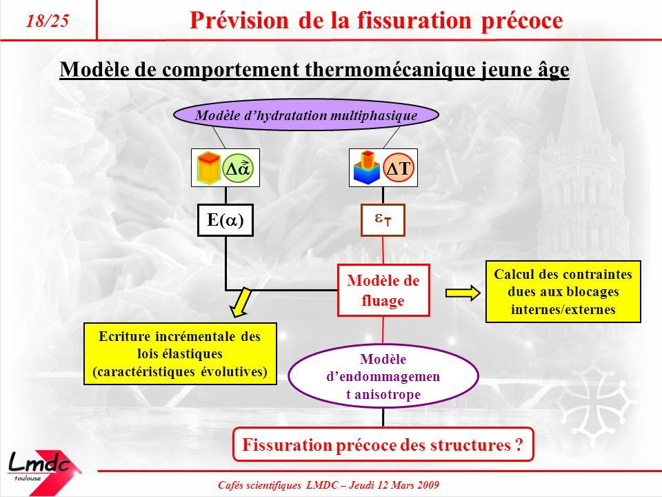 Cafés scientifiques LMDC – Jeudi 12 Mars 2009 Prévision de la fissuration précoce 18/25 Fissuration précoce des structures ? Modèle dendommagemen t an