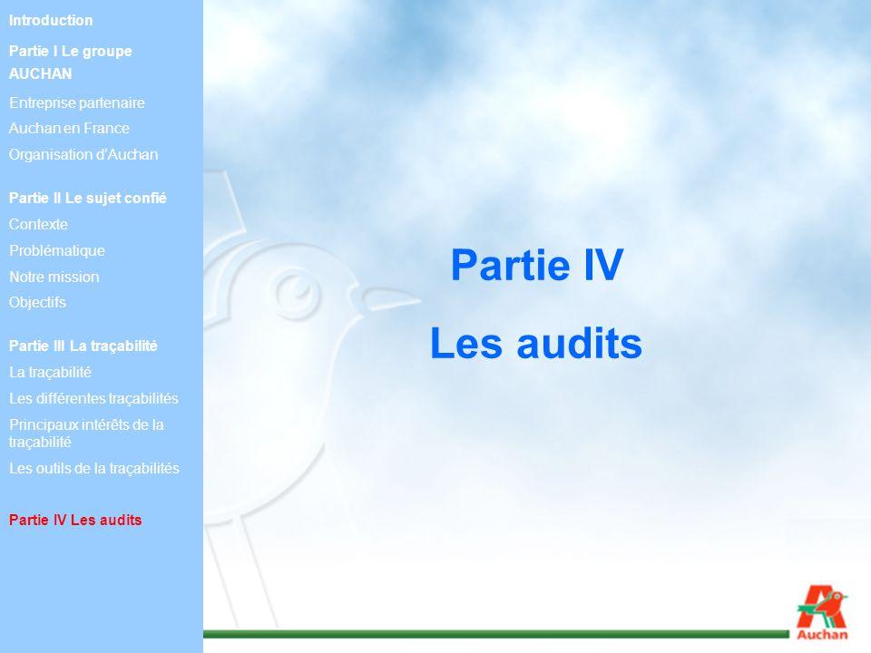 Partie IV Les audits Introduction Partie I Le groupe AUCHAN Entreprise partenaire Auchan en France Organisation dAuchan Partie II Le sujet confié Cont
