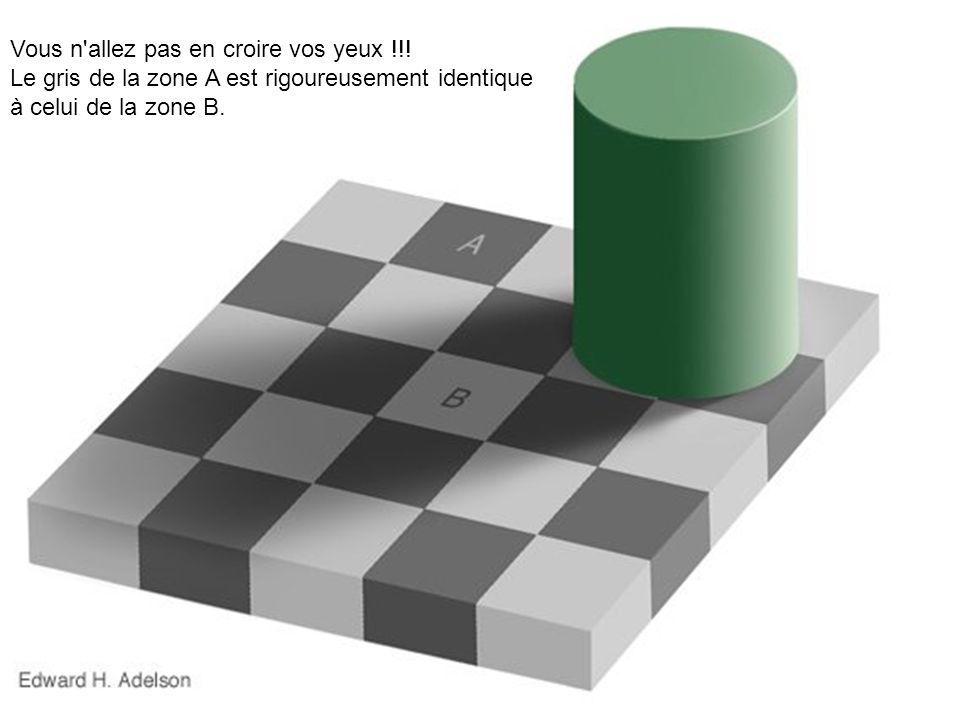 Vous n'allez pas en croire vos yeux !!! Le gris de la zone A est rigoureusement identique à celui de la zone B.
