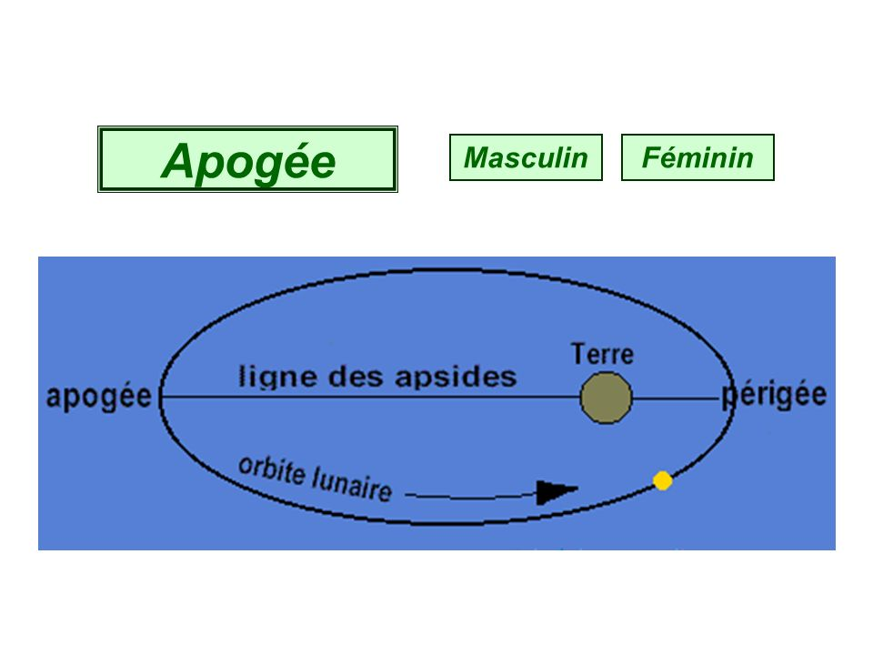 Obélisque Masculin Féminin