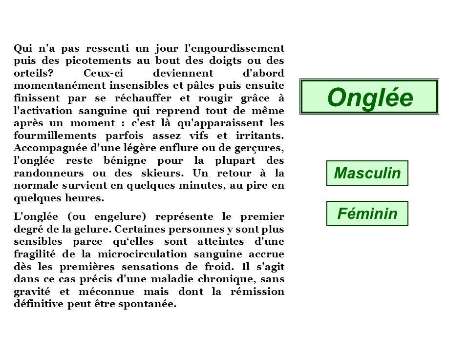 Ivoire MasculinFéminin