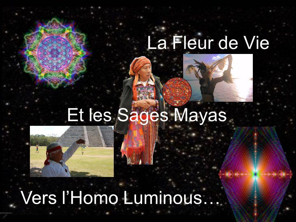La Fleur de Vie Et les Sages Mayas Vers lHomo Luminous…