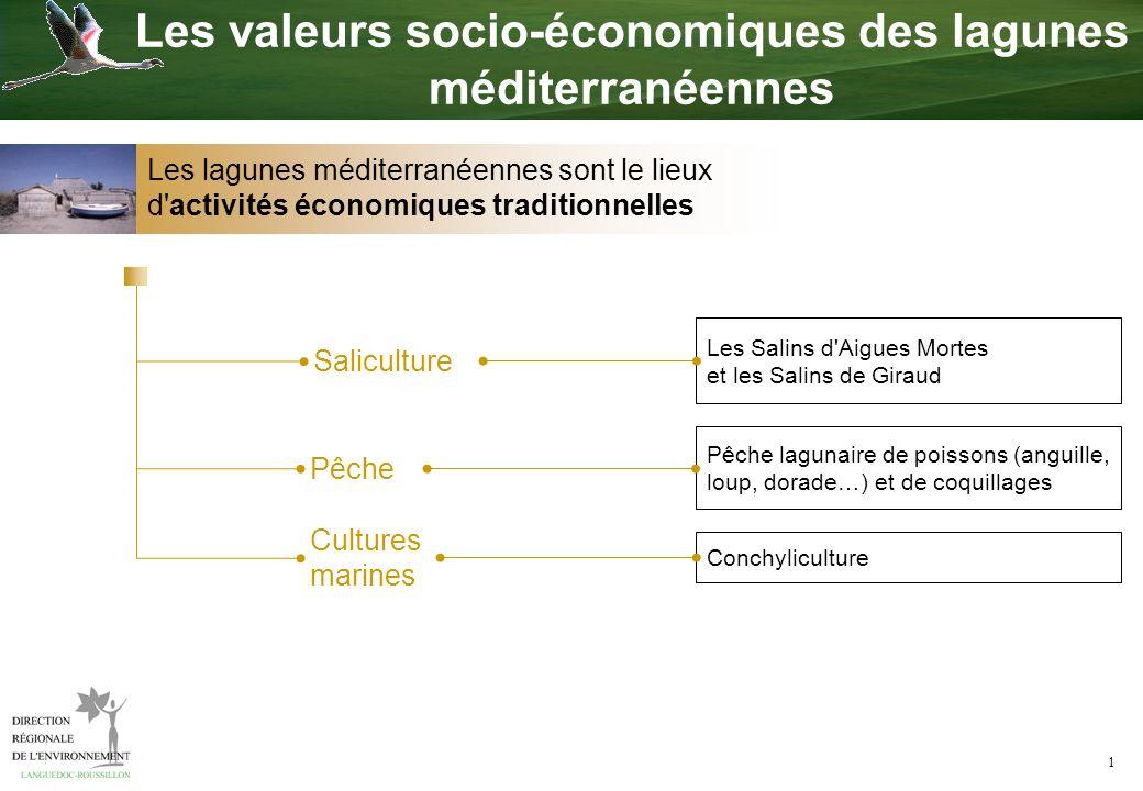 1 Pêche Saliculture Pêche lagunaire de poissons (anguille, loup, dorade…) et de coquillages Cultures marines Conchyliculture Les valeurs socio-économi