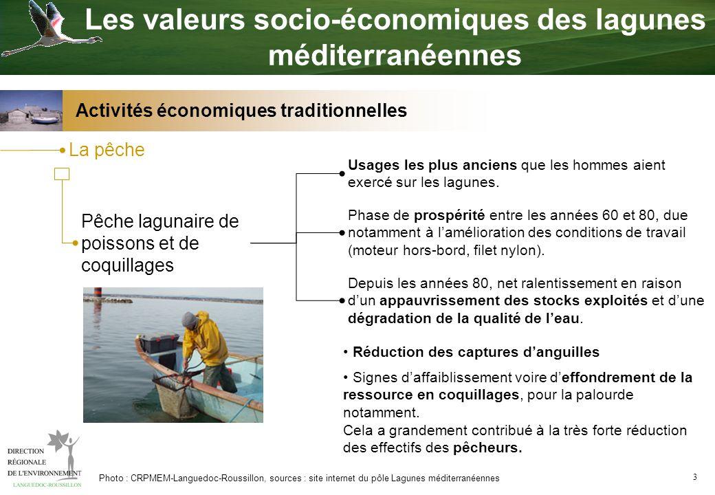 4 Cultures marines Conchyliculture Première activité économique lagunaire, par le chiffre d affaire et les emplois concernés.