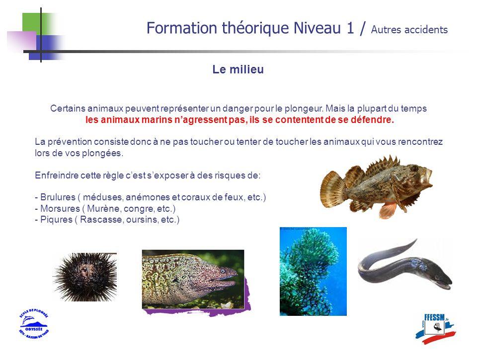 Le milieu Formation théorique Niveau 1 / Autres accidents Certains animaux peuvent représenter un danger pour le plongeur. Mais la plupart du temps le