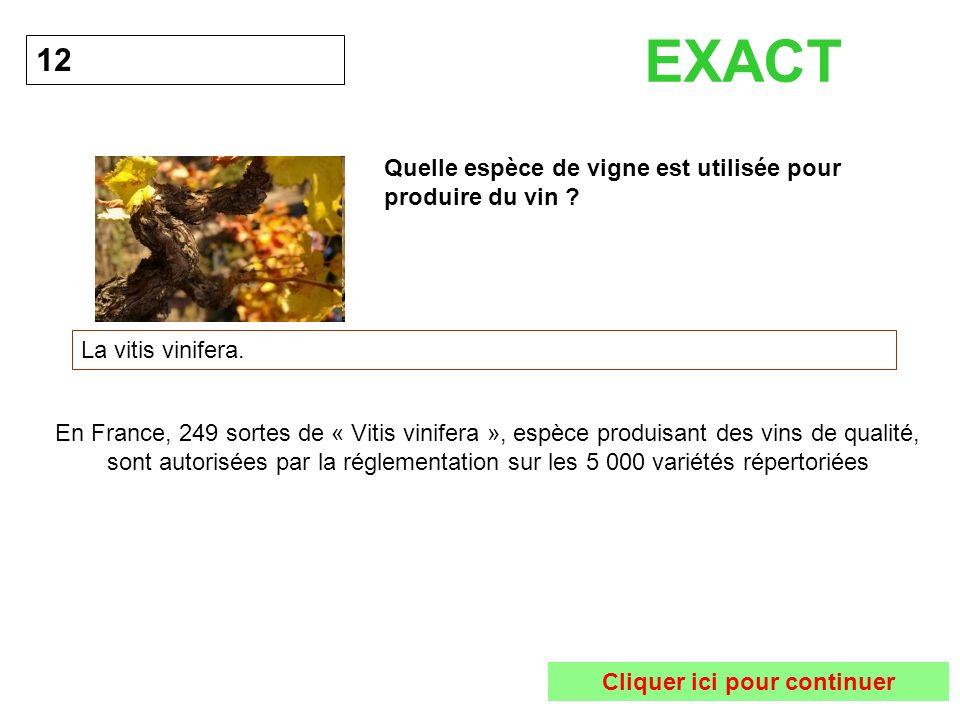 Quelle espèce de vigne est utilisée pour produire du vin ? 12 La vitis vinifera. EXACT En France, 249 sortes de « Vitis vinifera », espèce produisant