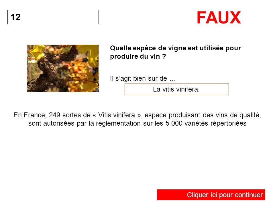 Quelle espèce de vigne est utilisée pour produire du vin ? 12 La vitis vinifera. FAUX Il sagit bien sur de … En France, 249 sortes de « Vitis vinifera