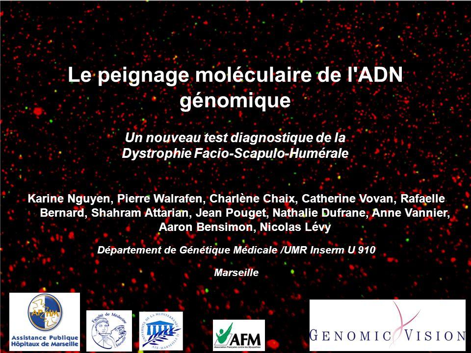 Le peignage moléculaire de l'ADN génomique Un nouveau test diagnostique de la Dystrophie Facio-Scapulo-Humérale Karine Nguyen, Pierre Walrafen, Charlè