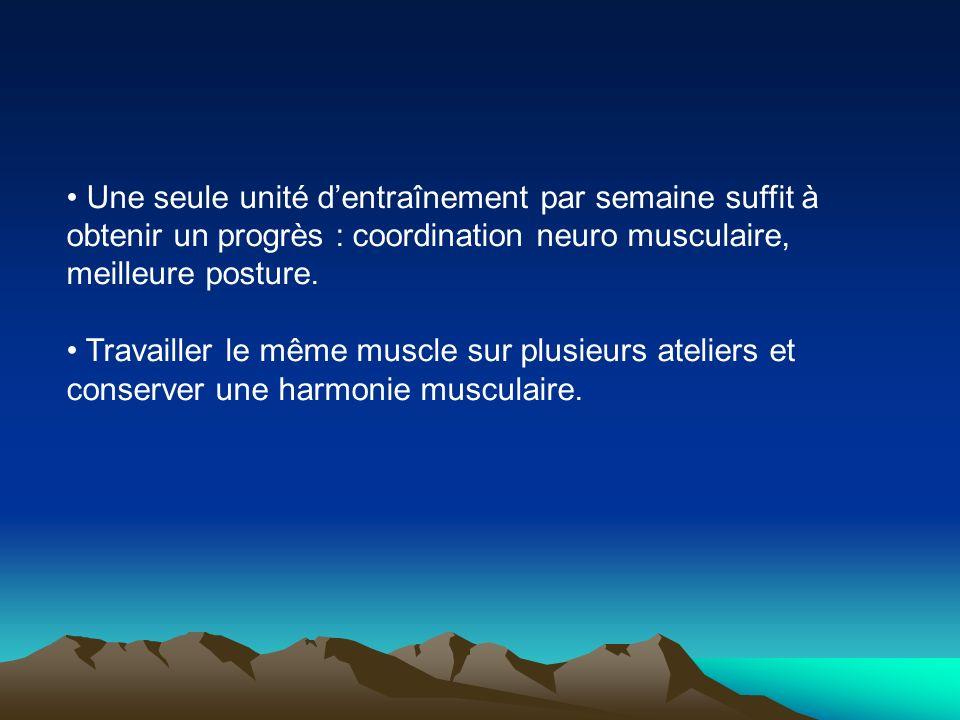 Une seule unité dentraînement par semaine suffit à obtenir un progrès : coordination neuro musculaire, meilleure posture. Travailler le même muscle su
