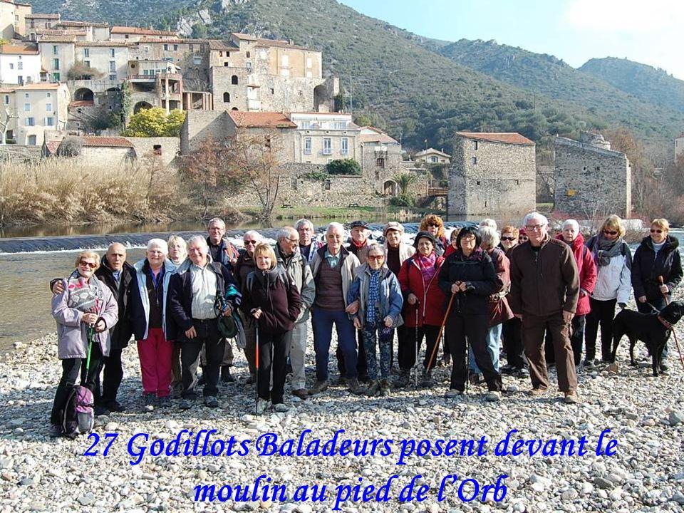 Balade lArboussié à Roquebrun le 21/02/2013