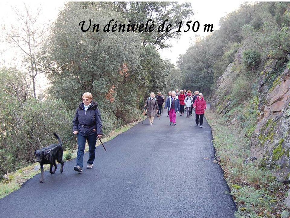 A 30km au nord de Béziers, au bord de lOrb, protégé des vents du nord par le massif de lEsquirol, Roquebrun, appelé le Nice de lHérault, jouit dun micro climat qui permet aux agrumes et autres plantes exotiques de croître en pleine terre.