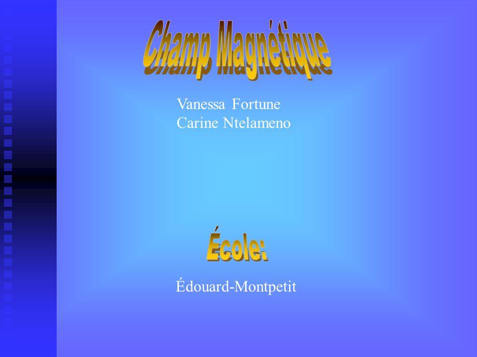 Vanessa Fortune Carine Ntelameno Édouard-Montpetit