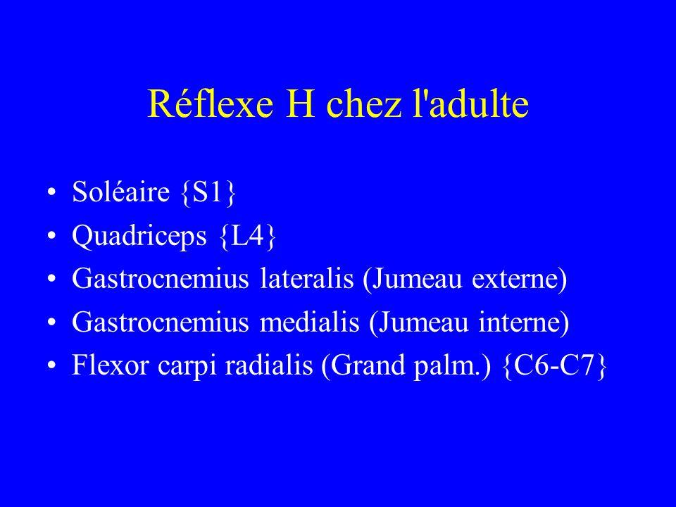Réflexe H chez l'adulte Soléaire {S1} Quadriceps {L4} Gastrocnemius lateralis (Jumeau externe) Gastrocnemius medialis (Jumeau interne) Flexor carpi ra