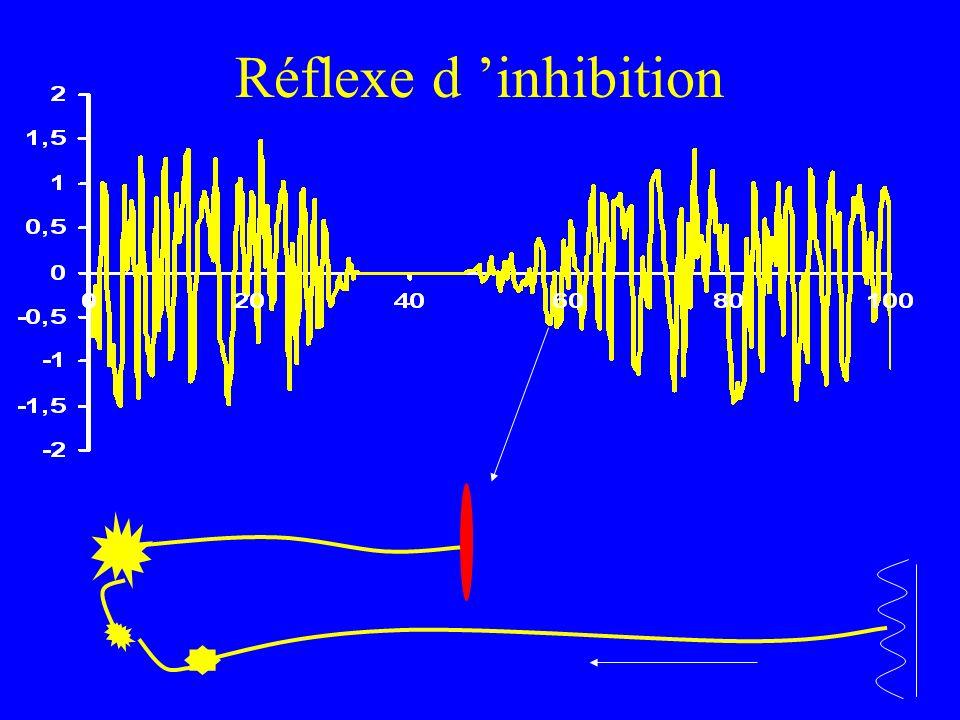 Réflexe d inhibition