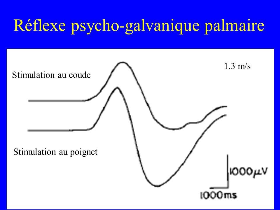 Réflexe psycho-galvanique palmaire Stimulation au coude Stimulation au poignet 1.3 m/s