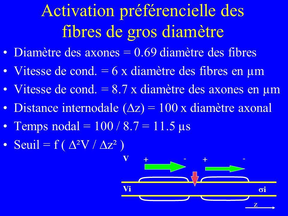 Activation préférencielle des fibres de gros diamètre Diamètre des axones = 0.69 diamètre des fibres Vitesse de cond. = 6 x diamètre des fibres en µm
