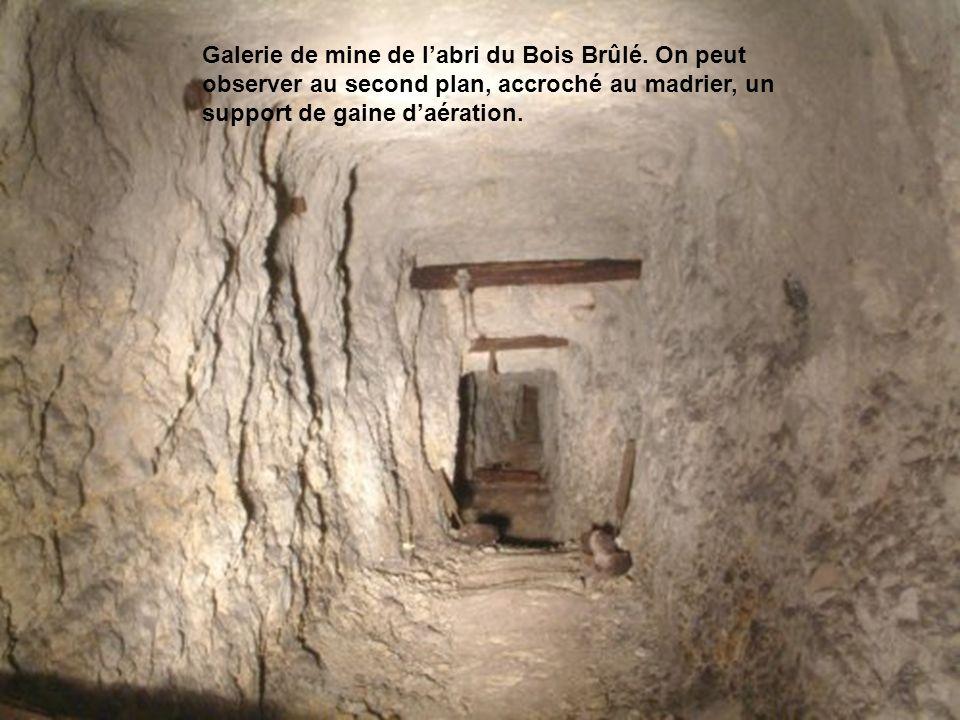 Un autre exemple est constitué par un abri caverne dans la forêt du Bois Brûlé ; au plus profond de ce stollen se trouve le départ dune galerie semi- rectiligne dune cinquantaine de mètres de long, se terminant en rameau de combat.