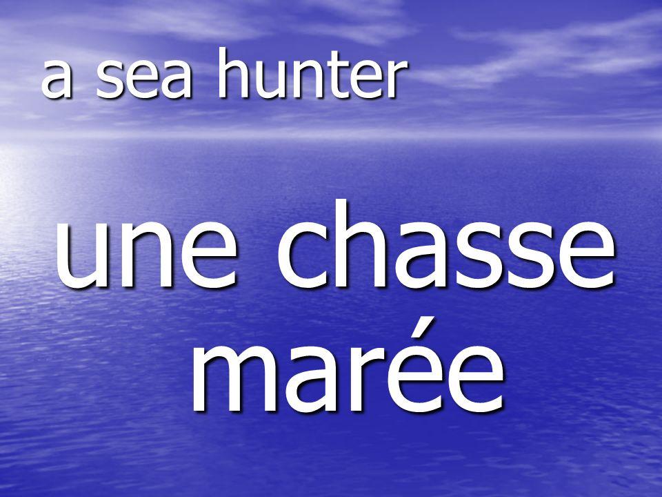 une chasse marée a sea hunter