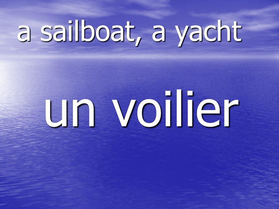 un voilier a sailboat, a yacht