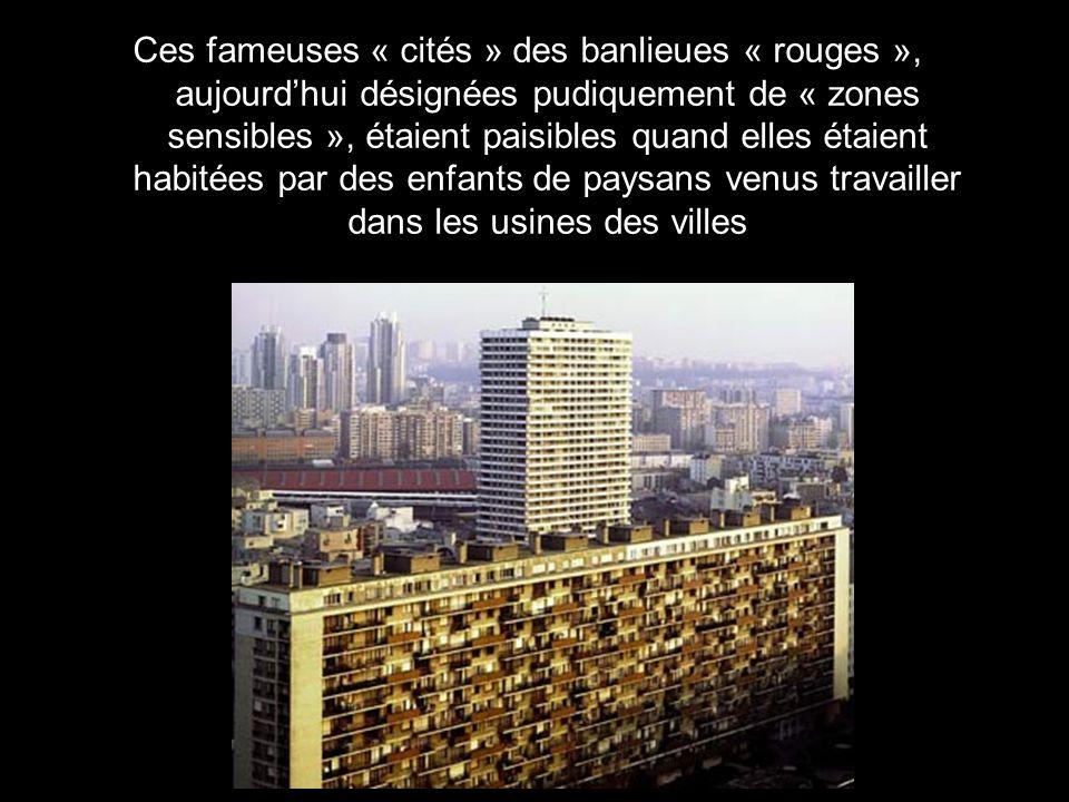 On na guère vu dAsiatiques ou de Français de souche vivant malgré eux dans les banlieues participer aux émeutes de 2005.
