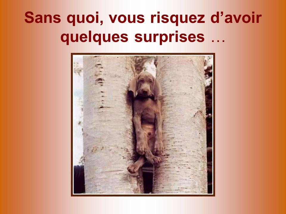 Sans quoi, vous risquez davoir quelques surprises …