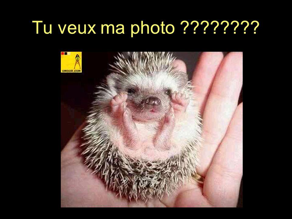 Tu veux ma photo ????????