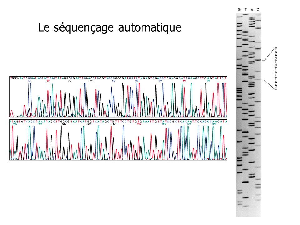 Le séquençage automatique