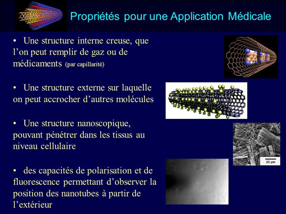 Propriétés pour une Application Médicale Une structure interne creuse, que lon peut remplir de gaz ou de médicaments (par capillarité) Une structure e