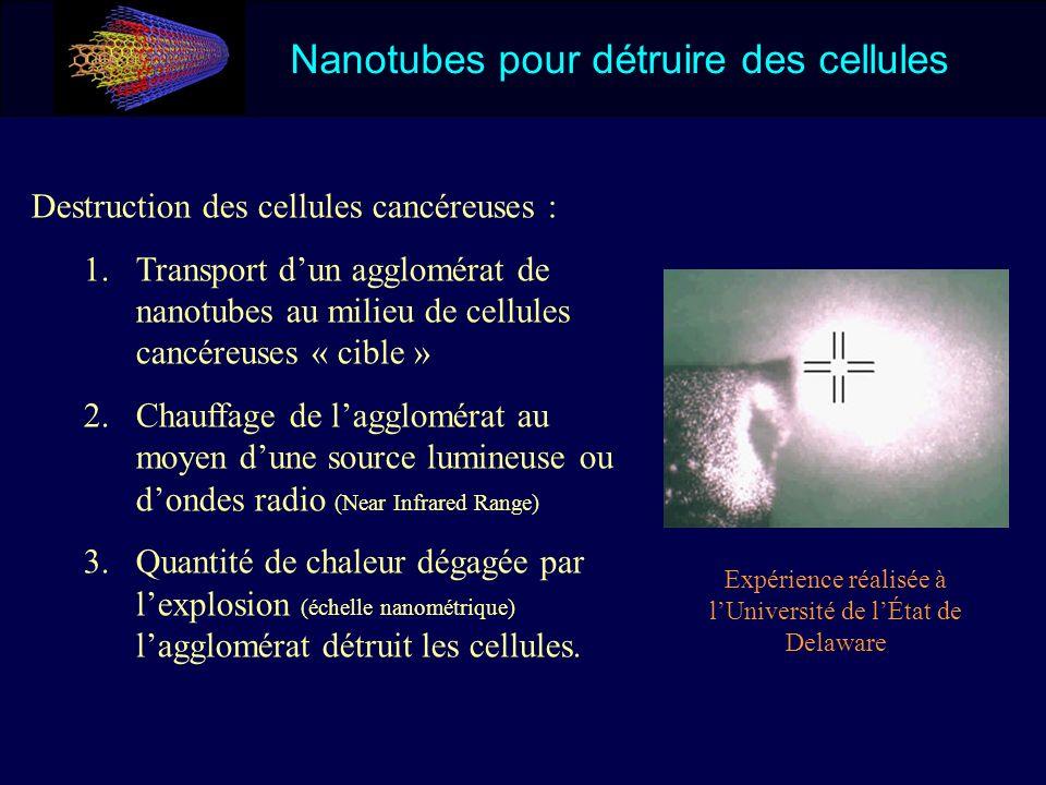 Nanotubes pour détruire des cellules Destruction des cellules cancéreuses : 1.Transport dun agglomérat de nanotubes au milieu de cellules cancéreuses