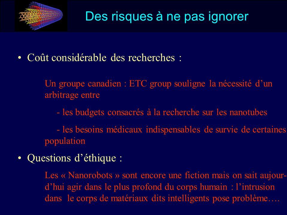 Des risques à ne pas ignorer Coût considérable des recherches : Questions déthique : Un groupe canadien : ETC group souligne la nécessité dun arbitrag
