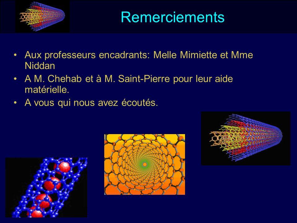 Aux professeurs encadrants: Melle Mimiette et Mme Niddan A M. Chehab et à M. Saint-Pierre pour leur aide matérielle. A vous qui nous avez écoutés. Rem
