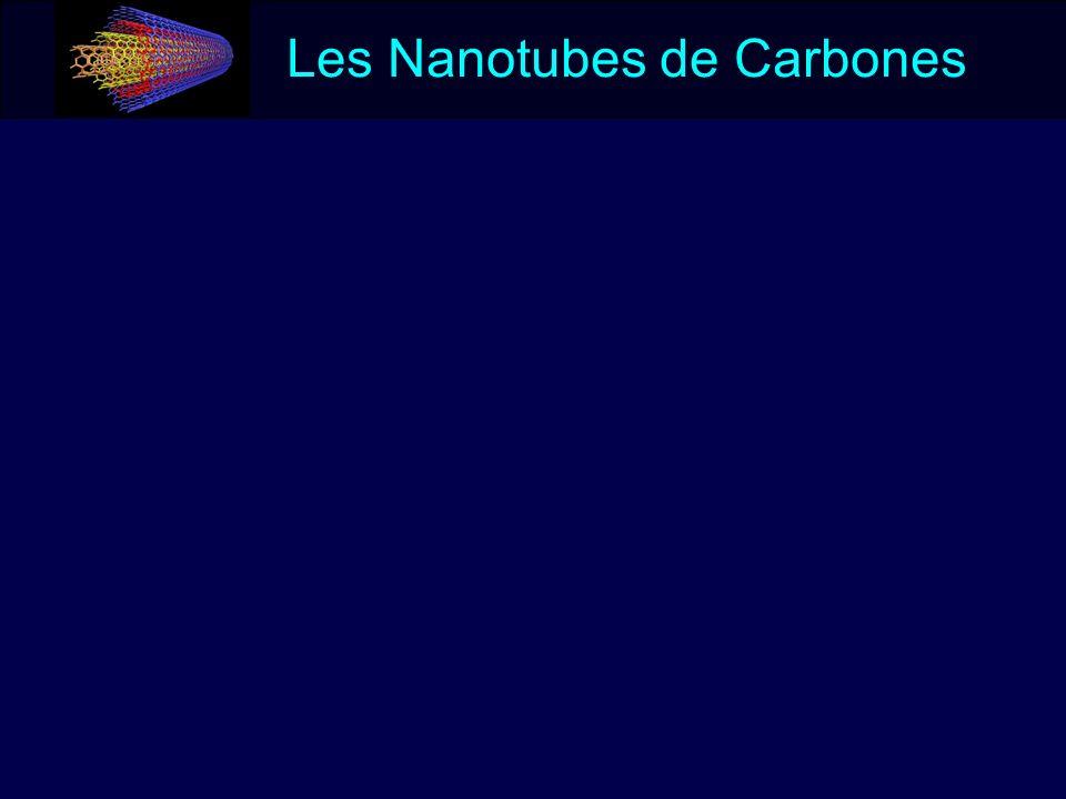 Des risques à ne pas ignorer Infiltration de serum de contrôle Infiltration de particules de quartz Infiltration de particules de charbon noir Infiltrations de nanotubes Carbolex Infiltrations de nanotubes non purifiés Infiltrations de nanotubes purifiés Poumons de souris infiltrée de 0.5mg de produit et euthanasiées 90 jours après le traitement