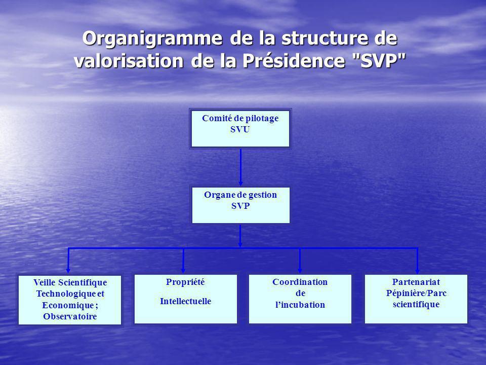 Comité de pilotage SVU Organe de gestion SVP Veille Scientifique Technologique et Economique ; Observatoire Propriété Intellectuelle Coordination de lincubation Partenariat Pépinière/Parc scientifique Organigramme de la structure de valorisation de la Présidence SVP