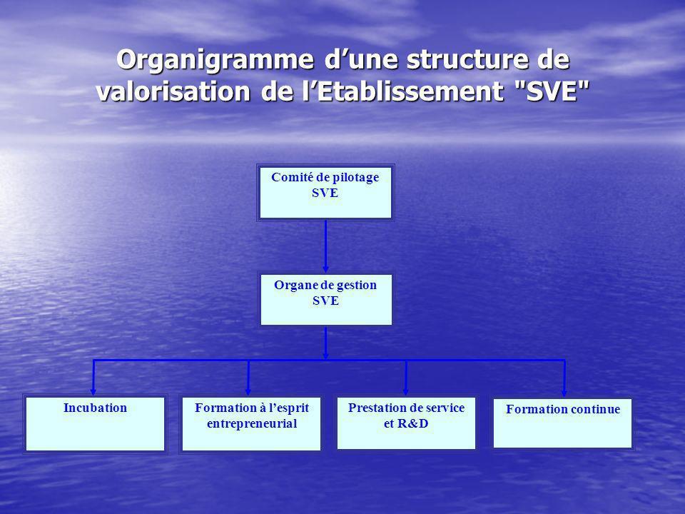Organigramme dune structure de valorisation de lEtablissement SVE Comité de pilotage SVE Organe de gestion SVE IncubationFormation à lesprit entrepreneurial Prestation de service et R&D Formation continue