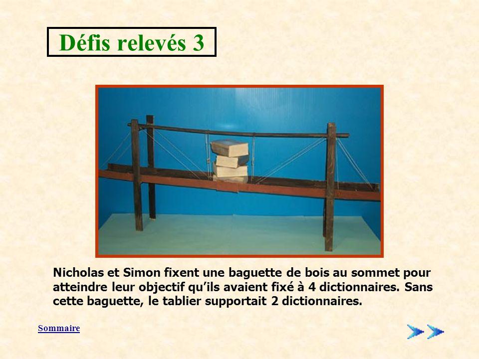 Sommaire Nicholas et Simon fixent une baguette de bois au sommet pour atteindre leur objectif quils avaient fixé à 4 dictionnaires.