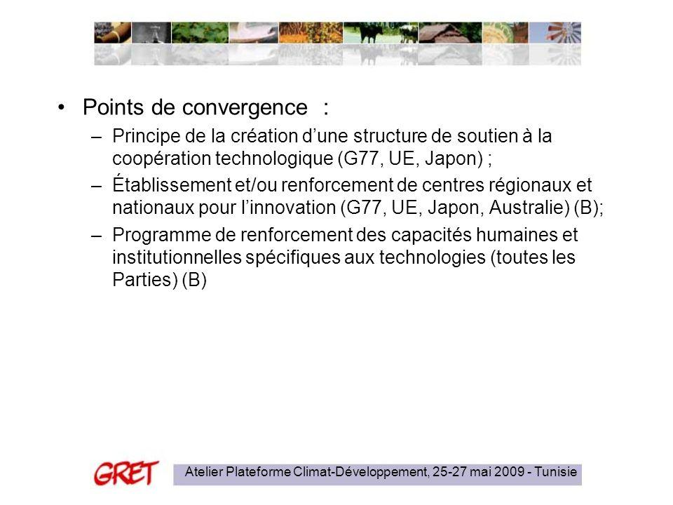 Atelier Plateforme Climat-Développement, 25-27 mai 2009 - Tunisie Points de convergence : –Principe de la création dune structure de soutien à la coopération technologique (G77, UE, Japon) ; –Établissement et/ou renforcement de centres régionaux et nationaux pour linnovation (G77, UE, Japon, Australie) (B); –Programme de renforcement des capacités humaines et institutionnelles spécifiques aux technologies (toutes les Parties) (B)